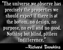 Dawkins%20quote